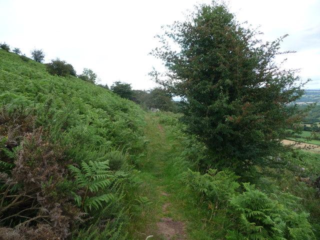 Hillside path on the eastern flank of the Skirrid