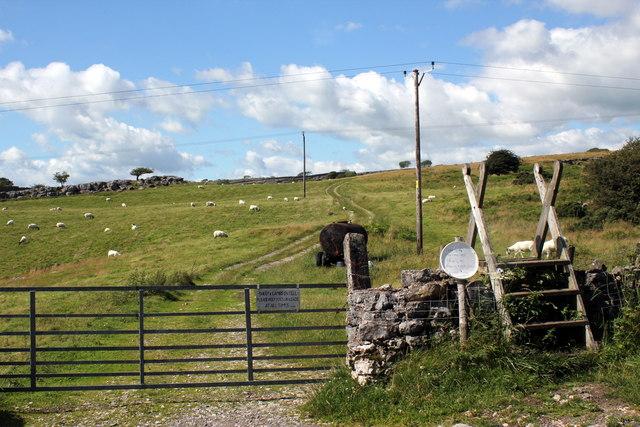 The road to Newbiggin Crags