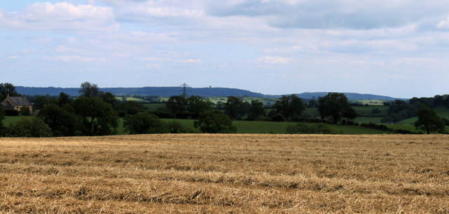 2011 : Wheatfield south of Doulting, recently harvested