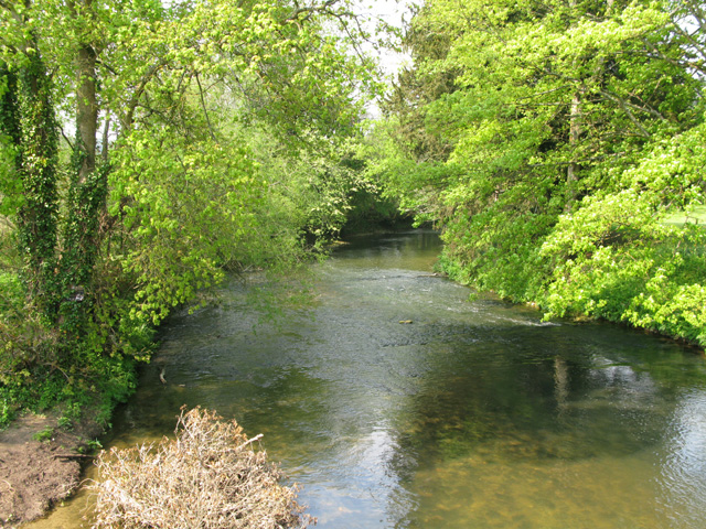 Looking upstream along the River Frome