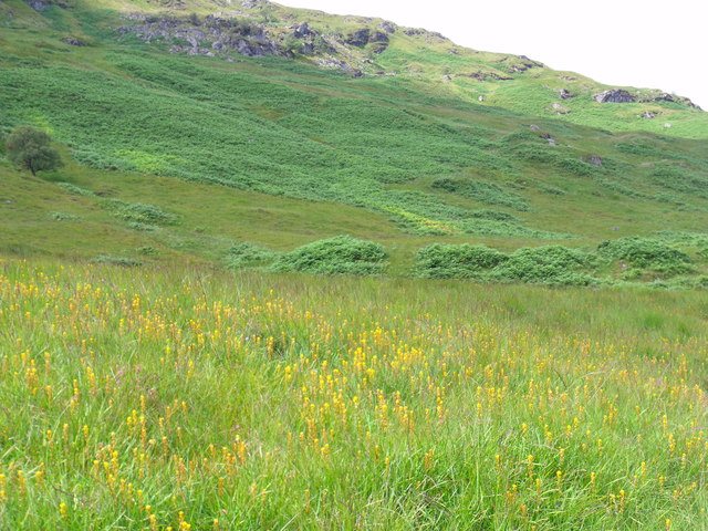 Meall Mor's lower slopes looking north-west