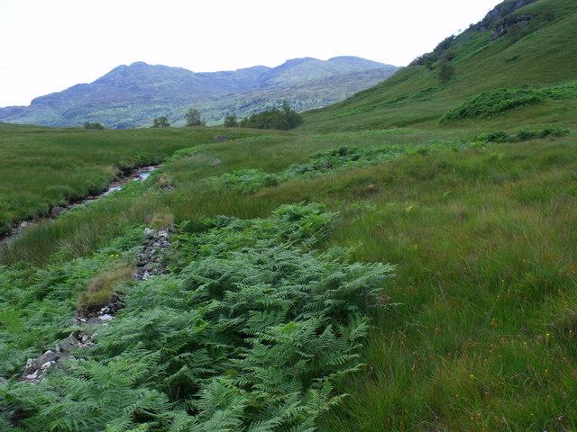 Looking downstream on the west bank of Strone Burn near Loch Katrine