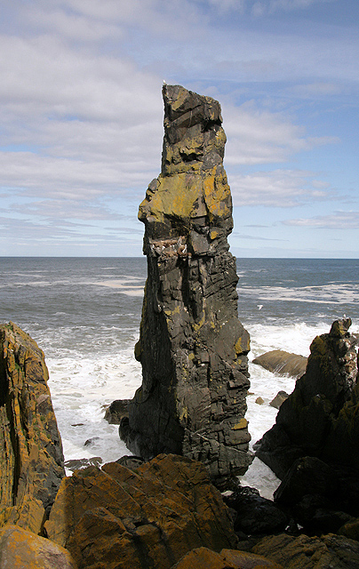 The Souter