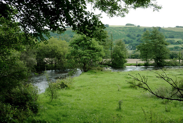 Pasture by the Afon Teifi south of Pont Gogoyan, Ceredigion
