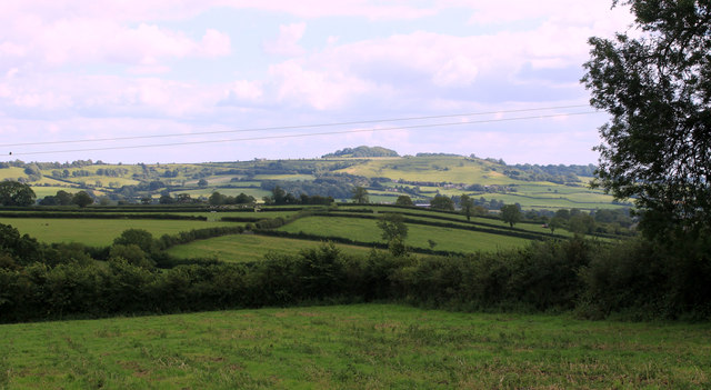 2011 : East from Chesterblade Road