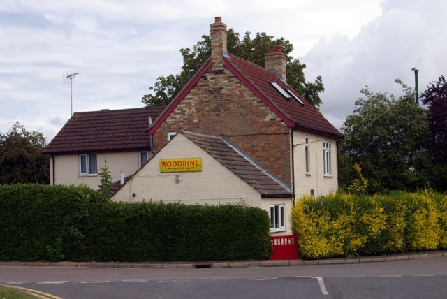 House in Cook's Drive