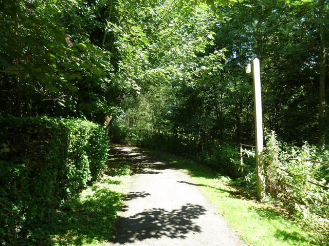 Monxton - St Mary: church path (i)
