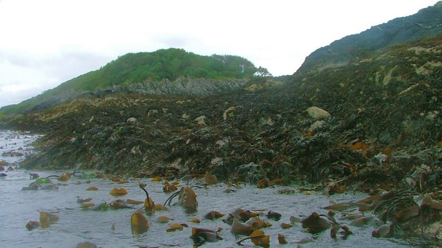 Shoreline below Cnoc an Smuidein