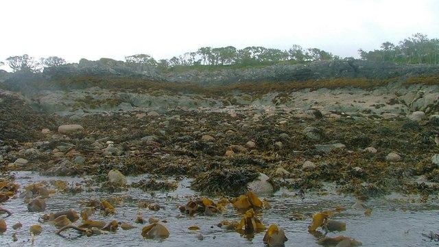 Shoreline bear Rubha nam Blàr Bòidheach