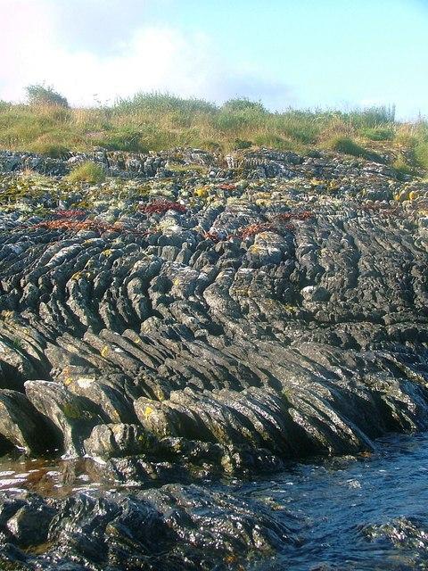 Eriska Shoreline