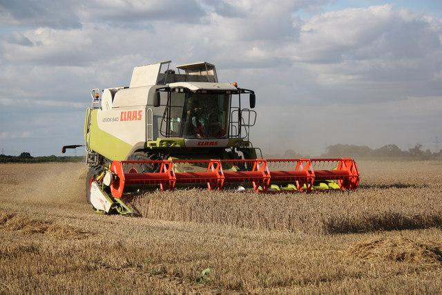 Harvest in Black House Field