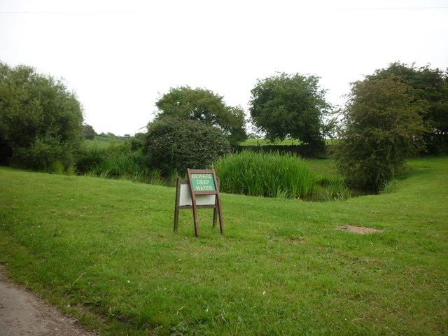 The village pond, Brearton