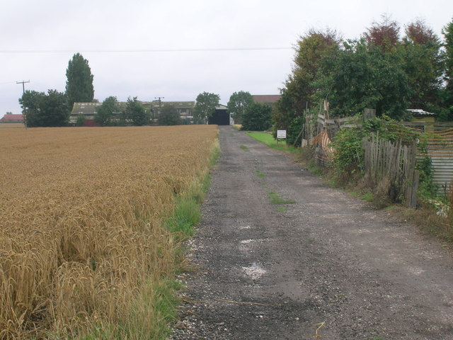 Farm track, Old Goole