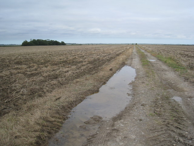 Track on Halton Marshes