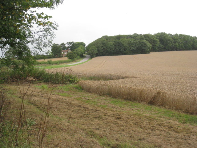 View towards Mere Plantation and Caistor Road