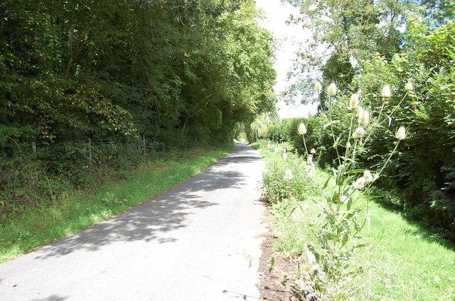 Borders Lane, near Underwoods Farm