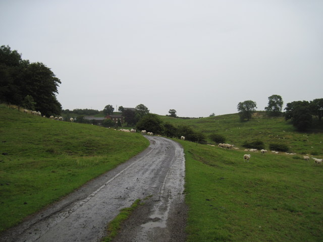 Track  to  Wood  House  Farm