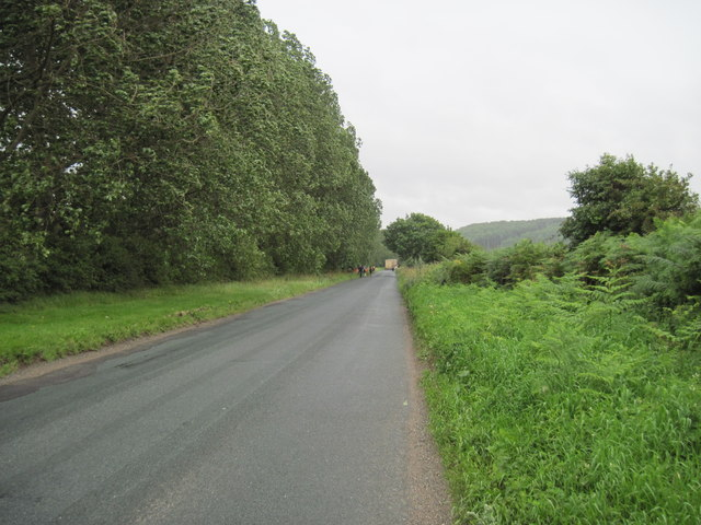 Lane  leading  to  Sked  Dale