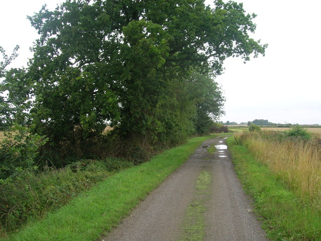 Farm track (bridleway) south of Whitgift