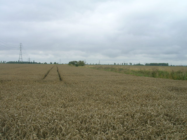Farmland, Ousefleet