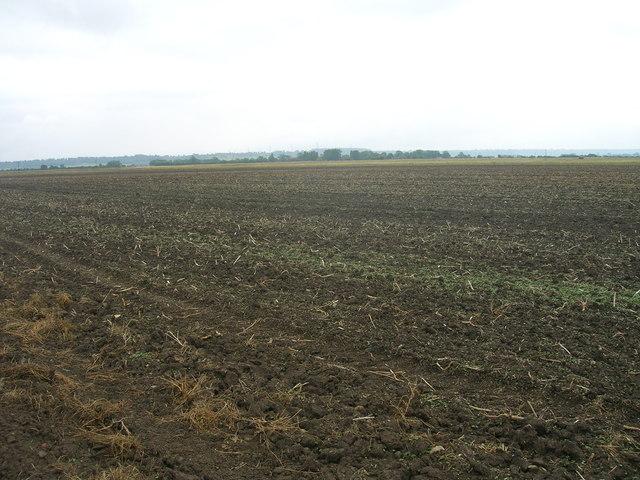 Farmland, Broadlane Gate