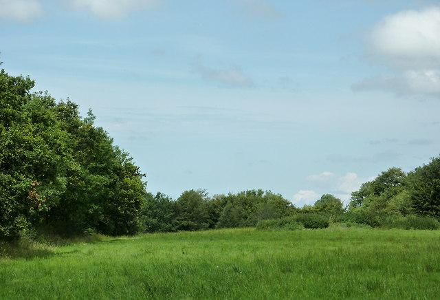 Farmland near Olmarch, Ceredigion