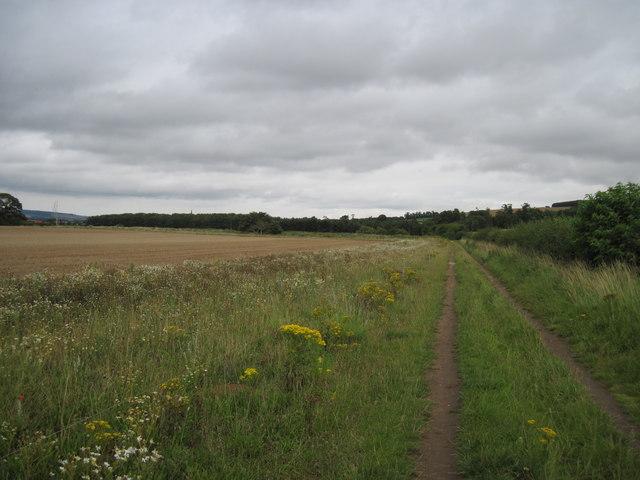 Track  toward  Ganton