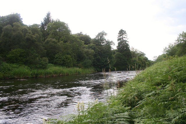 Don Upstream