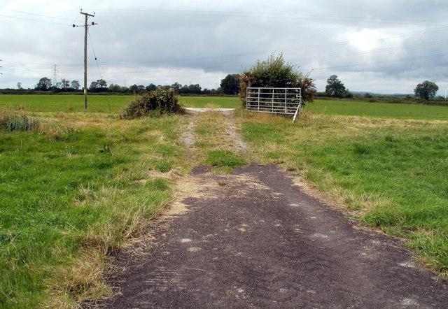 Path to a reen bridge, Whitson