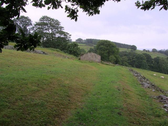 Bridleway above Lindley Wood (1)