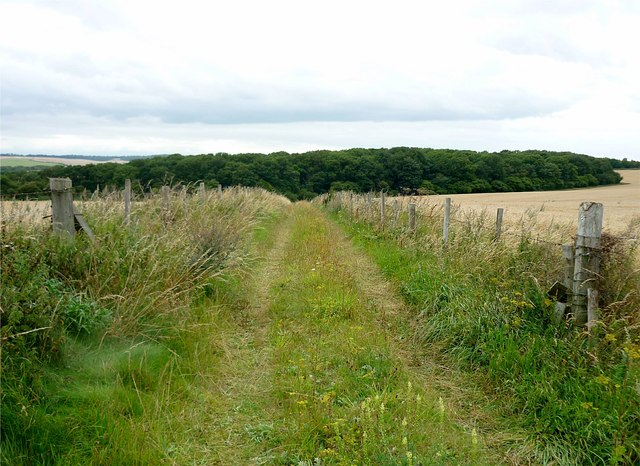 Track to The Warren