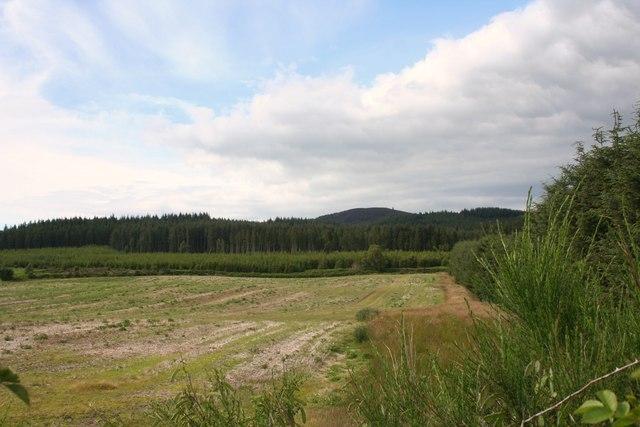 Farmland by Bairdaff