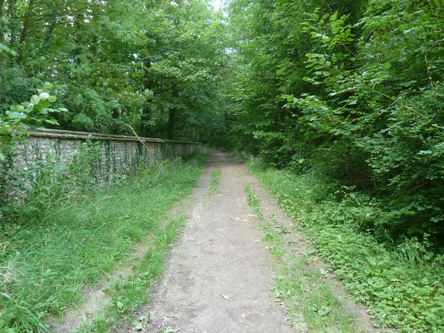 Bridleway passing Calhouns Plantation on the right