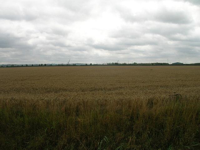 Farmland off Middle Road