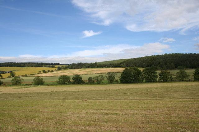 Aquhorthies Fields