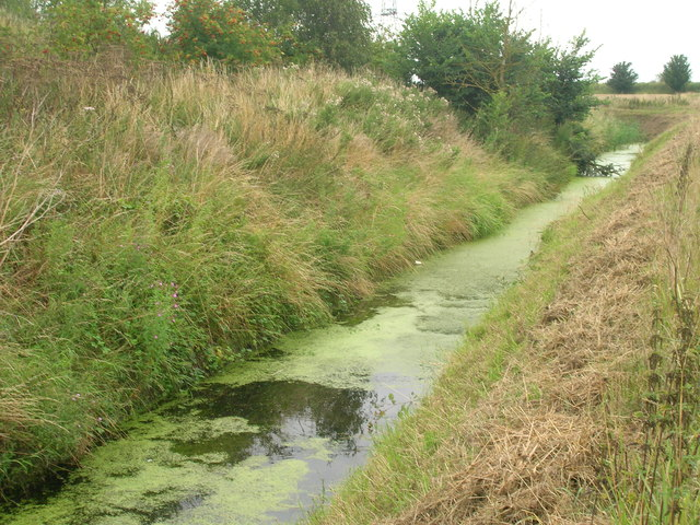 Drain beside farm track