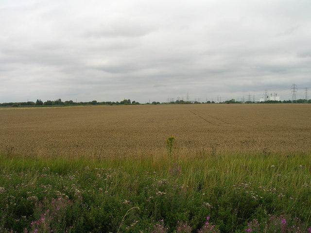 Farmland off the A18