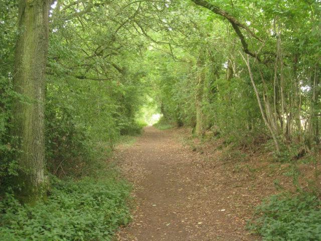 Pardown - Basingstoke path