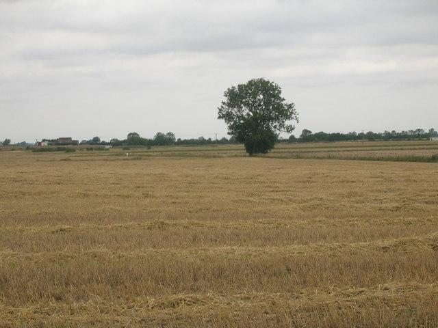 Farmland near Ealand