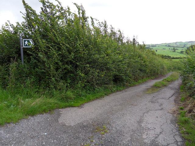 Bryn-ffanigl-ganol path
