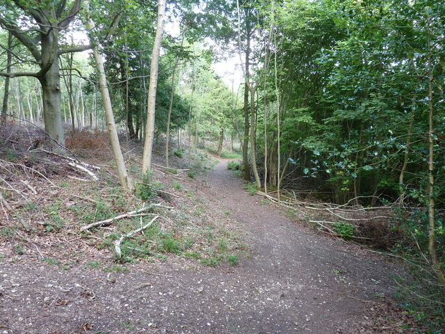Path east to Counter's Gate car park