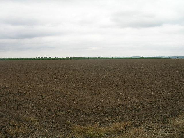 Farmland off Washingall Lane