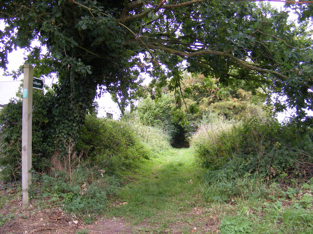 Footpath to the A1120