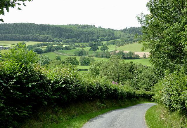 Lane to Olmarch, Ceredigion