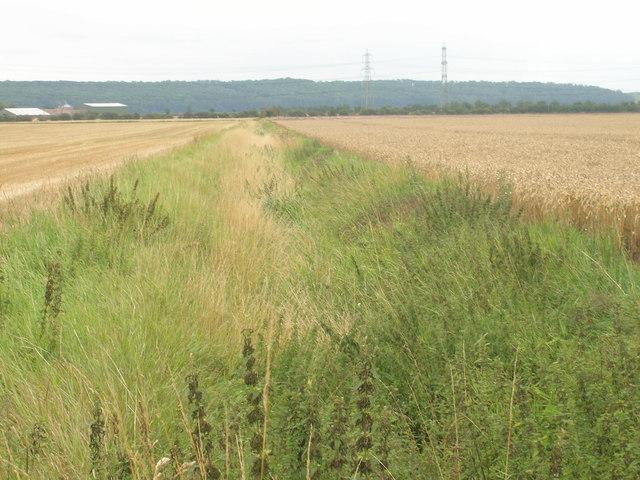 Field drain near Fockerby