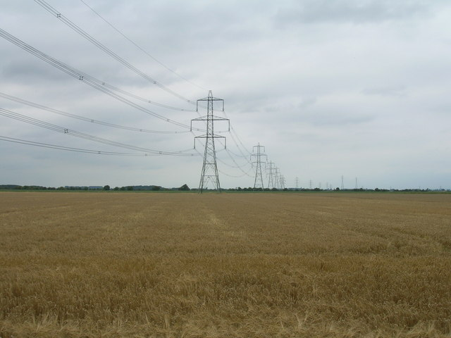 Farmland off Pasture Lane