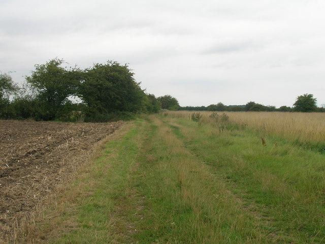 Bridleway towards Adlingfleet
