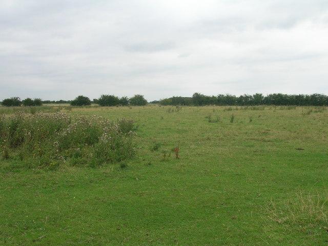 Grazing land, West Field