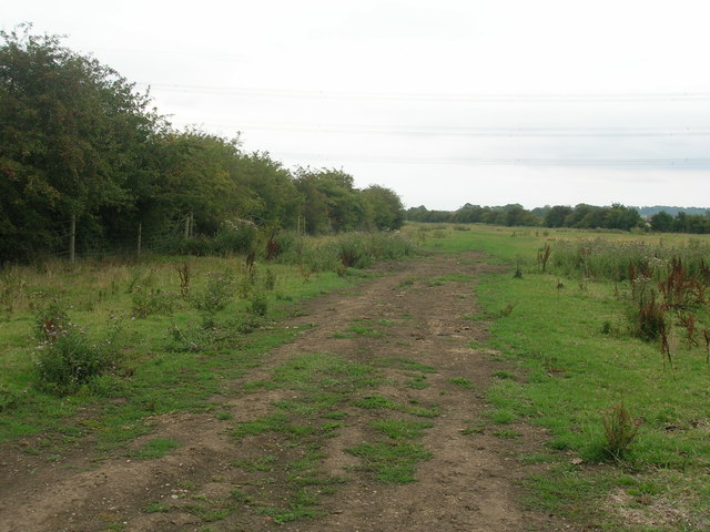 Farm track towards Adlingfleet