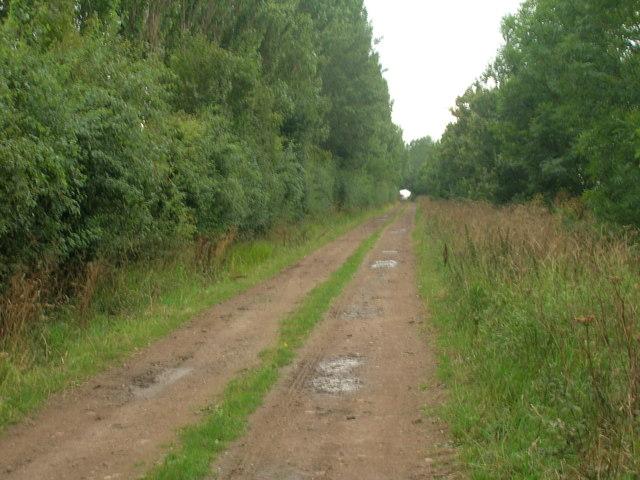 Common Lane (bridleway)